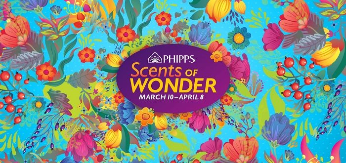 Spring Flower Show Scents Of Wonder At Phipps Conservatory And