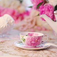 High Tea &amp Style Show