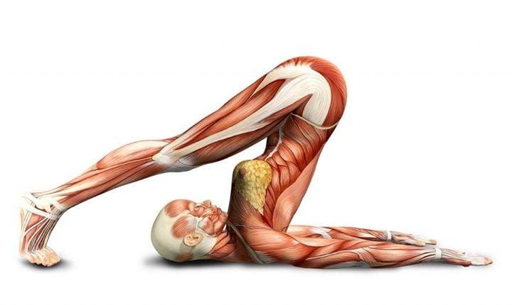 Taller Anatomía del Yoga at Instituto Kiron, Buenos Aires