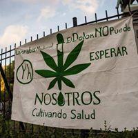 Charla sobre Cannabis medicinal