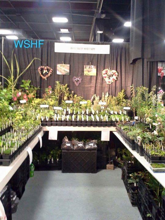 WSHF At The New Jersey Flower U0026 Garden Show