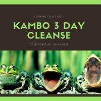 Kambo Medicine &amp More Healing Sessions - Gold Coast