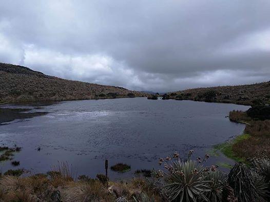 Caminata Parque Mataredonda