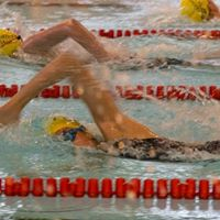 County Swimming Competition