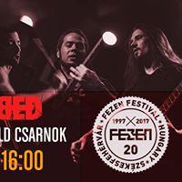 Stabbed - FEZEN Festival