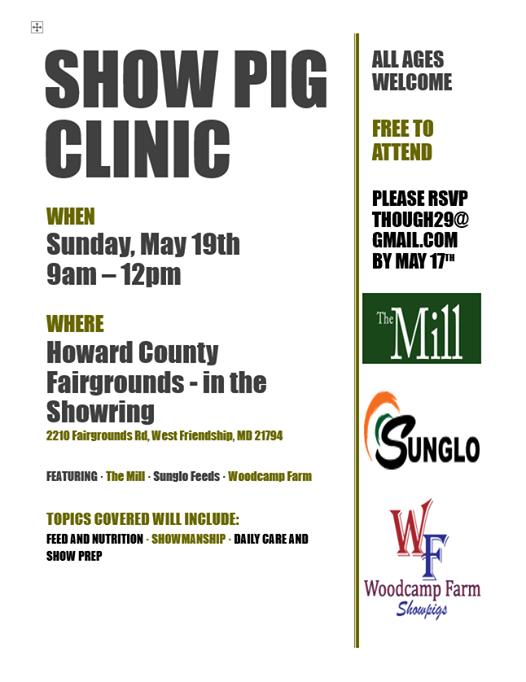 Show Pig Workshop at Howard County Fair, Maryland