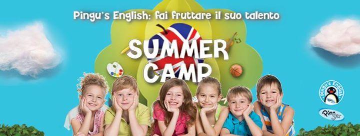 Pingus English Summer Camp 2019
