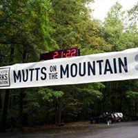 Mutts on the Mountain 5K Trail Run &amp 1M Fun Run