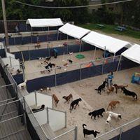 Bay View Bark Facility Tour