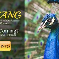 Heal Your Life Community - Meet-Up &amp Satsang