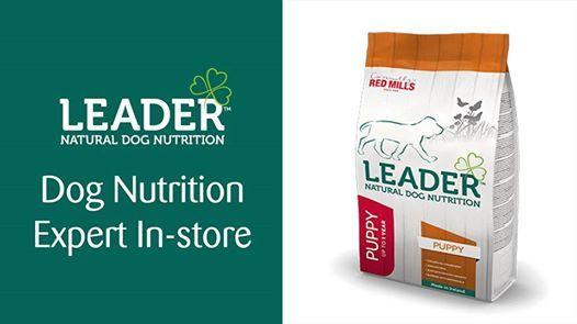 Leader Dog Food Demonstration & Advice