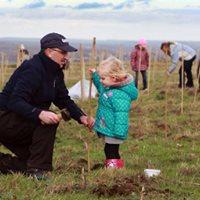 Public Tree Planting