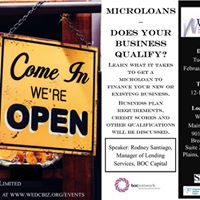 Microloans- Does Your Business Qualify