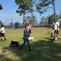 Monthly Training Tune-up class North Springs Park