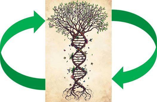 Workshop je eigen ecosysteem in woord en beeld brengen
