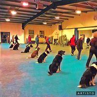 Forest Oak Dog Training Club