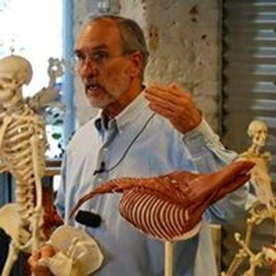 Anatomy in Clay Centers, Denver