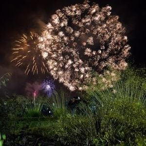 Fireworks and Bonfire Event at Trentham Gardens