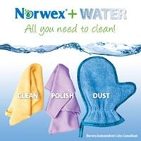 brittany &amp debis norwex party