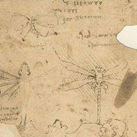Leonardo da Vinci and bio-inspiration