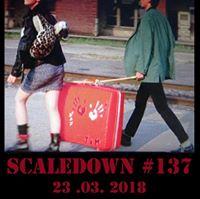 Scaledown 137