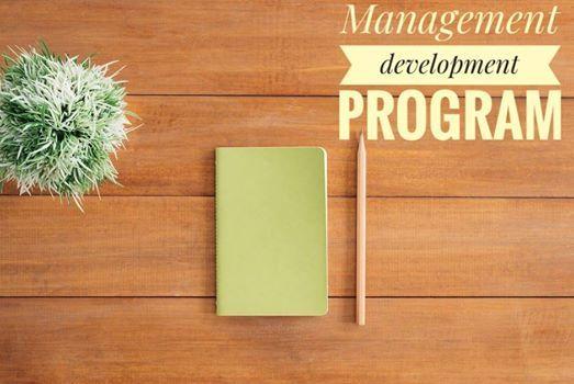 Management development program