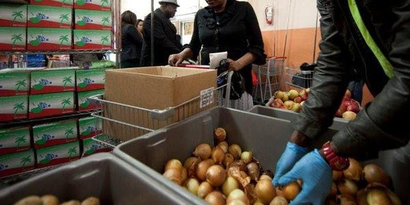 Wednesday Volunteering at The Campaign Against Hunger