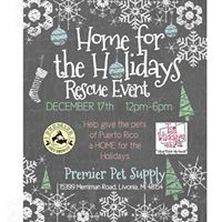 Home for the Holidays Rescue Event