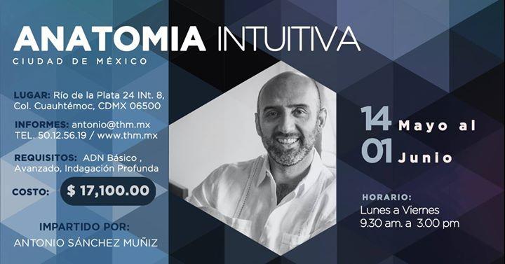 Curso Anatomía Intuitiva con Antonio Sánchez Muñiz at Río de la ...