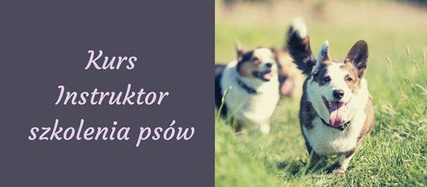 Wrocaw Modu praktyczny kursu Instruktor szkolenia psw