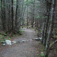Hike Lafarge Trail