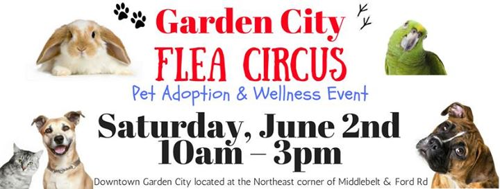 Flea Circus Pet Adoption & Wellness Event Garden City Mi