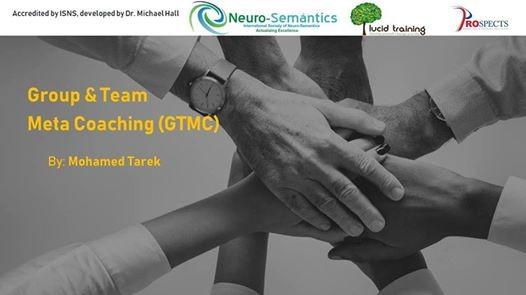 Groups & Teams Meta Coaching (GTMC)