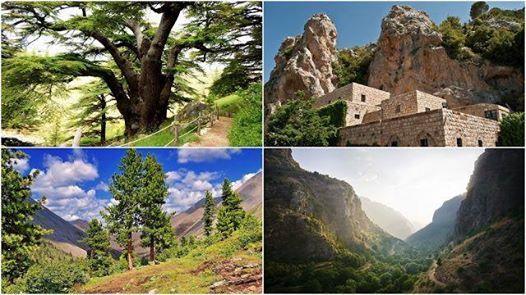 Bcharre - Qadisha Valley - Cedars of God