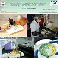 Curso Taller Microbiologia De Alimentos Y Superficies