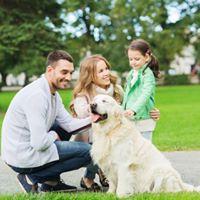 Free Dog Bite Prevention Seminar for Kids &amp Families