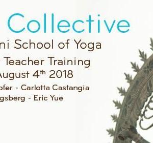 The Collective 200 hour Yoga Teacher Training