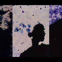 Robert Schaller Film as  for Music as  for Film