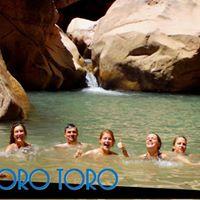FullPromo TORO TORO 28-29 Noviembre a solo 495 Bs. TODO INCLUIDO