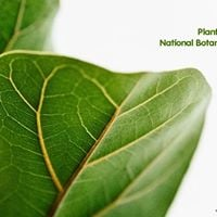 WildTrip Plant Identification at the National Botanical Garden
