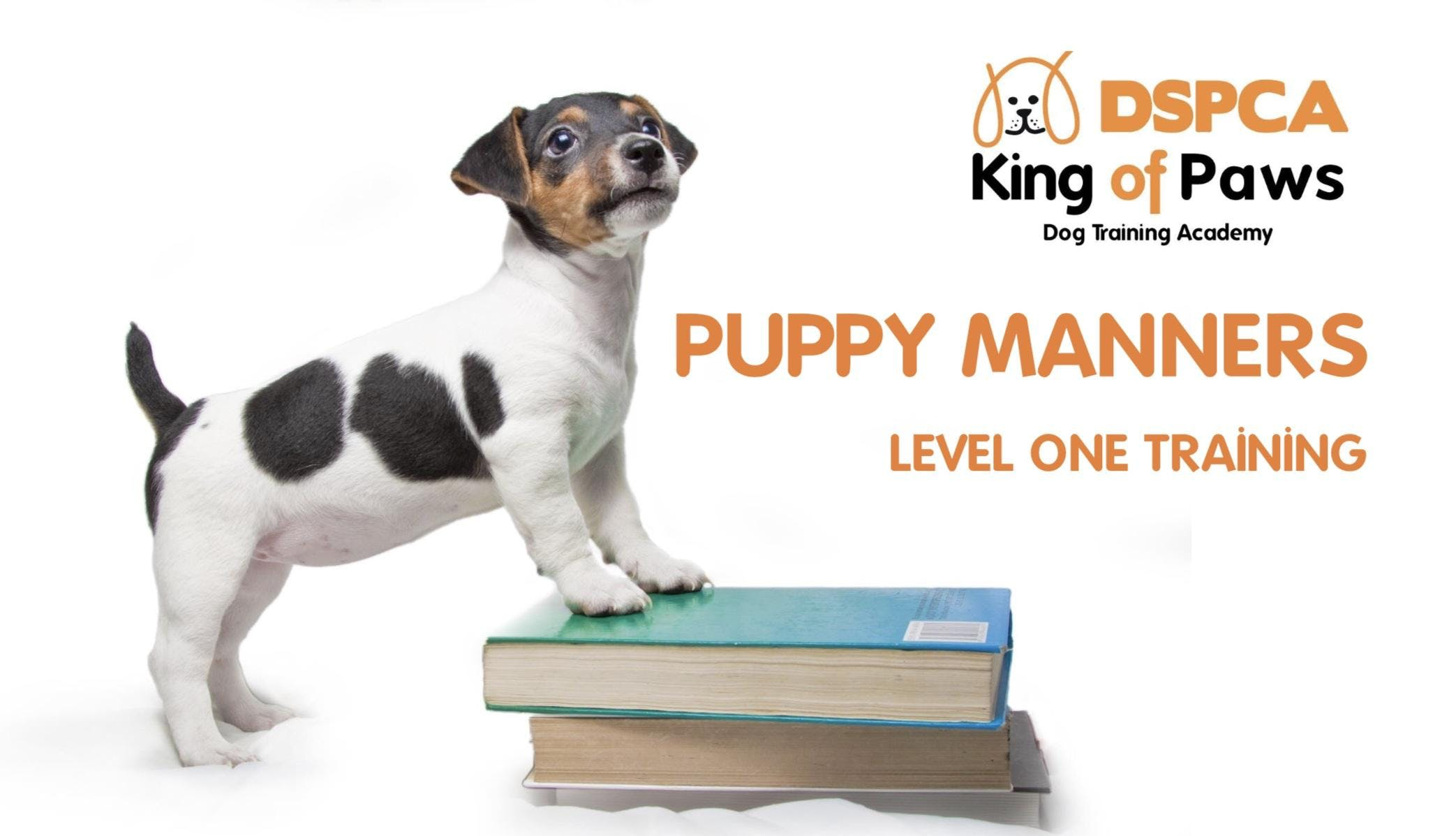 PUPPY MANNERS (LEVEL 1) Thursday DSPCA