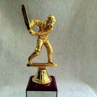 Cricket Festival In Lahore