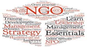 the management of nongovernmental development organizations