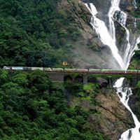 Dudhsagar Waterfall Monsoons Trek