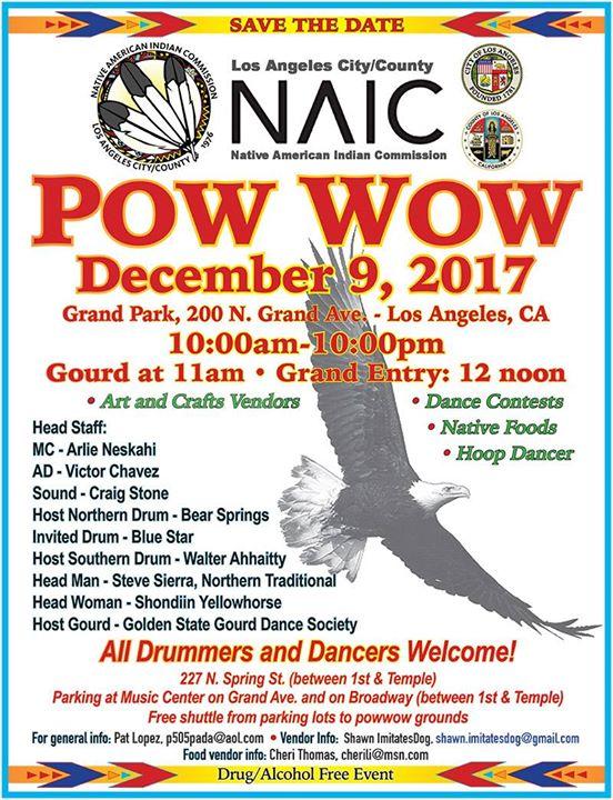 NAIC Pow Wow