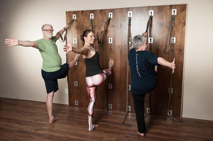 Anatomy of Asana & Movement:Hip Openings, Forward Folds & Twists at ...