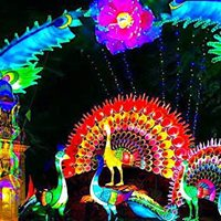 The Festival of Light Comes to Dublin