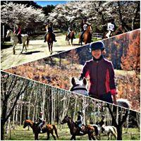Horseback Riding at Green Field Riding Club