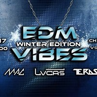 EDM VIBES - Winter Edition