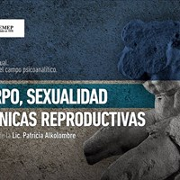 Cuerpo sexualidad y tcnicas reproductivas